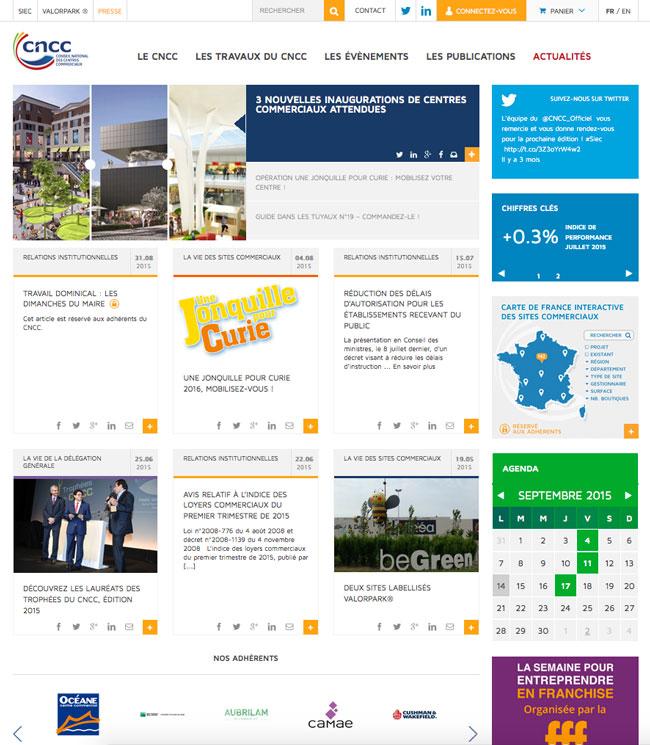 Page d'accueil du site du Conseil National des Centres Commerciaux