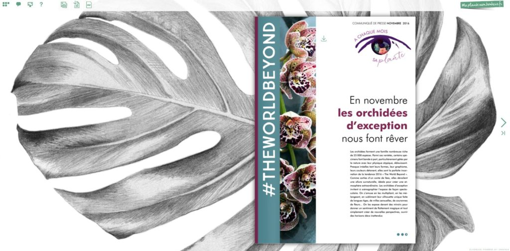 Flipbook Les Orchidées d'exception novembre 2016