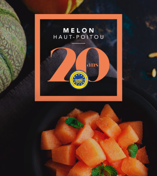 vignette melon du haut poitou