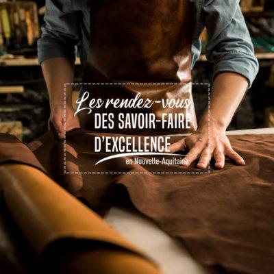 Réalisation du site «Les rendez-vous des savoir-faire d'excellence»